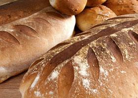 shutterstock 76710325 crop u629 - Leveranciers
