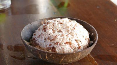 rice 2371061 1920 400x225 - Blog