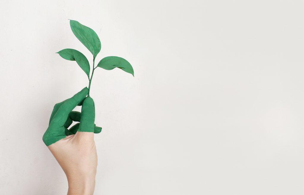hand met groen geverfde vingers houdt blad vast tegen witte achtergrond
